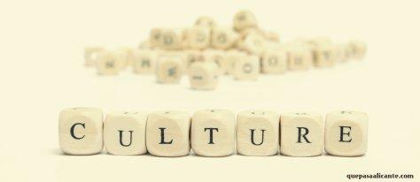 Culture1AZ