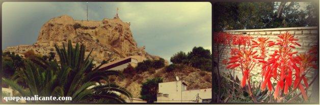 CastilloSBBelemiaflor_AsiaZie